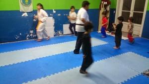 Taekwondo 15